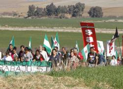 El Sindicato Andaluz de Trabajadores denuncia que la creación de un Observatorio de Tierra no tiene sentido y exige la entrega de tierras públicas a cooperativas ciudadanas o Ayuntamientos