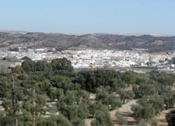 Los municipios malagueños de Almargen y Cañete la Real serán sedes de un curso de iniciación al deporte de la orientación destinado a técnicos de los ayuntamientos de la provincia