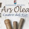 La VI edición de la Feria Artesanal Ars Olea de la localidad cordobesa de Castro del Río se llevará a cabo los próximos días 11,12 y 13  de octubre