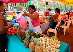 La mayoría de los alimentos que se consumen en América Latina y el mundo se producen por agricultura familiar