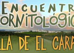 El municipio cordobés de El Carpio acogerá en diciembre el tercer Encuentro Ornitológico, dedicado especialmente a los canarios
