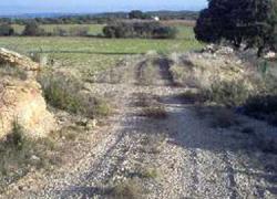 Comienzan el Plan de Reparación de Caminos Rurales en el municipio gaditano de Chipiona con la prioridad del asfaltado del camino de La Talona