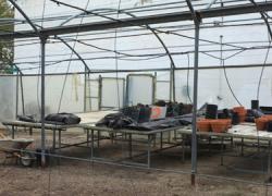 Nace el proyecto solidario «La Manchita» en el municipio gaditano de Trebujena para la cesión de tierras de cultivo a familias con necesidades