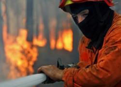 El Sindicato Profesional de Bomberos denuncia que la falta de personal propició que solo dos profesionales acudieron al incendio ocurrido en el municipio sevillano de Cantillana