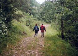 La red de senderos naturales del municipio gaditano de Conil de la Frontera contará con una nueva señalización para poner en valor y facilitar el conocimiento sobre este entorno natural