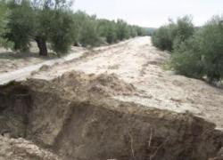 Los 14 municipios de la provincia de Jaén con más explotaciones agrarias reparan sus caminos rurales gracias a una subvención de la Junta de Andalucía de 1,7 millones de euros