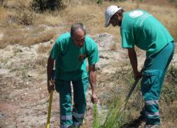 17 personas desempleadas de Barbate aceden a puestos de trabajo relacionados con el medio ambiente y la construcción por medio del Plan de Choque por el Empleo de la Junta