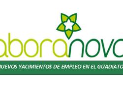 34 negocios son creados en 8 municipios de la Mancomunidad del Guadito mediante el proyecto Laboranova que busca impulsar actividades económicas dentro de los nuevos yacimientos de empleo