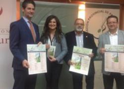 El itinerario flamenco «A la verde oliva» lleva una treintena de espectáculos flamencos a 27 municipios de la provincia de Jaén en los meses de abril, mayo y junio