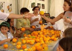 Coín celebra este próximo domingo, 11 de mayo, la XVIII Fiesta de la Naranja en la que se ofrece lo mejor de la gastronomía y la artesanía coineña