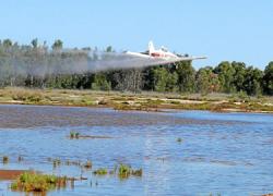 Punta Umbría, Almonte, Palos de la Frontera y Moguer son algunas de las localidades que se van a beneficiar delPlan de Control de Mosquitos 2014 puesto en marcha por la Diputación de Huelva