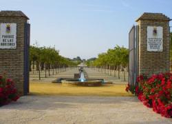 El Parque de las Marismas de Los Palacios y Villafranca contará con unas nuevas instalaciones fijas, zonas de aseos e instalación eléctrica para acoger futuros eventos