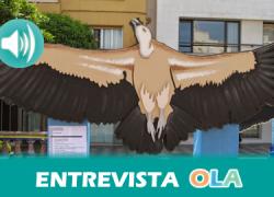 """""""Si se acabaran las migraciones de aves, se acabaría nuestro planeta"""", Paco Montoya, coordinador de proyectos del colectivo ornitológico Cigüeña Negra"""