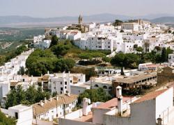 Vejer de la Frontera propone una nueva ordenanza social que garantizará los suministros básicos a las familias más necesitadas del municipio