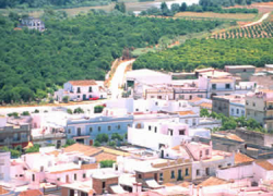Gelves convoca el 'I Concurso de Decoración de Calles' antes de las Fiestas Patronales 2014 con el objetivo de fomentar la participación ciudadana y embellecer la localidad