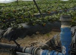 """El Centro de Formación Francisco Romero de Cártama acogerá el próximo viernes 25 de septiembre, una jornada sobre el uso del agua regenerada en la agricultura denominada """"Agua regenerada, una alternativa eficiente para la agricultura"""""""