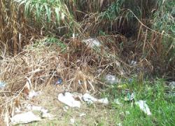 El Ayuntamiento de Manilva exige la limpieza inmediata del cauce del río ante el estado de suciedad y abandono en el que se encuentra, mediante una carta remitida a la Agencia de Medio Ambiente y Agua