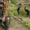 Amnistía Internacional denuncia que la lucha por la tierra es una fuente de violaciones sistemáticas de los Derechos Humanos en Colombia