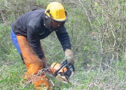 La Confederación Hidrográfica del Guadalquivir licita por 1 millón de euros un tercer proyecto de prevención de incendios y lucha contra el cambio climático en el interior de la provincia de Granada