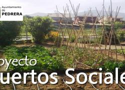 El curso 2014/2015 del Aula Abierta de Mayores de Pedrera acoge una conferencia sobre el uso y gestión de los Huertos Sociales, una iniciativa de producción agrícola ecológica muy presente en la localidad
