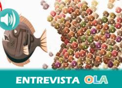 """""""El Tratado de Libre Comercio va a abrir las puertas a la privatización y deja de garantizar los servicios públicos que hasta ahora cubre el Estado"""", Ángeles Castellano, responsable de comunicación de FACUA"""