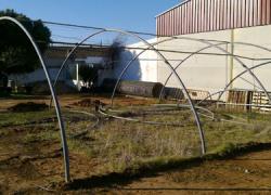 Hornachuelos arrendará cuatro hectáreas de tierra para crear un invernadero con plantaciones hortícolas que dará empleo a ocho vecinos y vecinas y fomentará el cooperativismo y la participación ciudadana