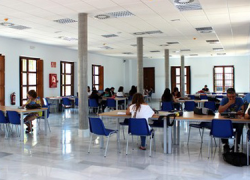 La Rinconada dispone desde el pasado mes de mayo de una nueva biblioteca municipal con una amplia sala de estudio universitaria y zonas diferenciadas para las diferentes edades de las personas usuarias