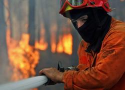 El municipio gaditano de Vejer de la Frontera ha acogido un ejercicio de incendio forestal para progresar en los procedimientos y protocolos de actuación y comunicación en caso de emergencias