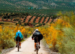 El proyecto Vía Verde de Segura recupera para el uso público 27,6 kilómetros de vieja línea ferroviaria a su paso por seis municipios jienenses de la Sierra de Segura con el objetivo de fomentar el medio rural y la naturaleza