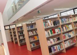 La Biblioteca Pública de La Rinconada fomenta la lectura y el interés cultural entre los más jóvenes a través de diversas actividades como el Rincón del Libro que se desarrolla del 17 al 28 de agosto