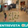 """""""El Museo del Vino de Almonte es un centro de interpretación y divulgación para intentar acercar las tradiciones vinícolas que se han ido perdiendo con el paso de los años"""", Carlos Martín, gerente MUVA (Huelva)"""