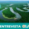 """""""Las agresiones a activistas ambientalistas en el Amazonas son cada vez más comunes y están forzando el desplazamiento de comunidades"""", Nayibe Gutiérrez, investigadora del Proyecto Amazonas de la UPO"""