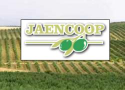 La cooperativa San Francisco de Villanueva del Arzobispo, la mayor productora de aceite de oliva de la localidad jienense, aprueba su integración en el Grupo Jaencoop siendo uno de los grupos referentes a nivel nacional
