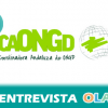 """Retomar el diálogo con la Diputación de Málaga nos va a permitir entrar en convocatorias destinadas a proyectos para ONG's en 2016"", Silvio Testa, portavoz de la Coordinadora de ONGD de Málaga"