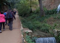 La localidad de Maracena organiza el próximo mes de enero una ruta de senderismo de 15 kilómetros y 5 horas de duración que recorrerá la zona de la Dehesa del Generalife y el Parque Periurbano de Granada