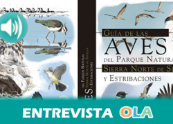 """""""La Sierra Norte de Sevilla es una zona de la reserva de la biosfera donde confluyen más de 200 especies de aves"""", Humberto Gacio, coautor 'Guía de la Aves del Parque Natural Sierra Norte de Sevilla'"""