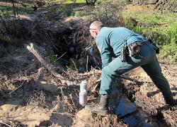 El Seprona investiga un importante vertido de alpechín y sosa caústica en el Guadalquivir a la altura del tramo cordobés de Villa del Río, cuya procedencia de origen apunta al municipio jienense de Porcuna