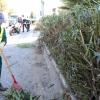 La Patrulla Verde de Marbella realiza cerca de de 1.000 informes preventivos y 60 actas de inspección en parques y jardines durante 2015, lo que supone un incremento con respecto al anterior ejercicio