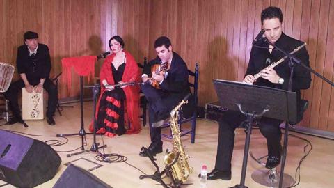 La localidad almeriense de Roquetas de Mar celebra el ciclo `Roquetas en clave de Flamenco´ que se creó en el año 2013 con el objetivo de dar más difusión a los espectáculos de flamenco en la provincia