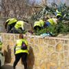 Parte de las 44 personas contratadas a través del Programa Especial de Urgencia Municipal de Carmona, irán destinadas a incrementar las labores de limpieza en distintos puntos de de la localidad sevillana
