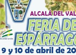 Alcalá del Valle celebra su IV Feria del Espárrago ofreciendo la posibilidad de participar en talleres de cocina, mercado agroalimentario y artesanal, degustaciones gratuitas e incluso un festival de música
