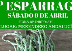 Almargen celebra la III edición de la Esparragá el próximo 9 de abril, una iniciativa de la Asociación Zumalla que tiene como objetivo fomentar esta antigua tradición de salir al campo a coger espárragos
