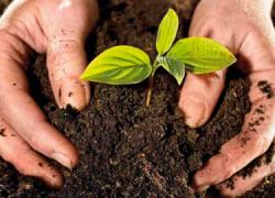La Diputación de Granada presenta un manual sobre compostaje doméstico que servirá de guía en aquellos municipios que deseen reducir los residuos que acaban en el vertedero realizando prácticas a pequeña escala