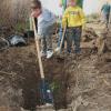 Finalizan con éxito las tareas de reforestación de la zona del arroyo del Salado llevadas a cabo por familias y colegios de Marchena mediante una campaña impulsada por la asociación ecologista Taller Verde