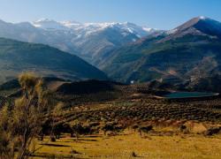 Las localidades jiennenses de Jimena y Torres recuperarán los parajes naturales que se vieron afectados por el incendio forestal en 2005 con trabajos de intervención y reforestación de las zonas quemadas