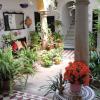 San Roque presenta el III Certamen de Patios y Fachadas, que este año incluye como novedad la modalidad de calles y plazas con el objetivo de mostrar la belleza de los rincones sanroqueños en primavera