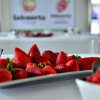 La cooperativa moguereña Cuna de Platero participa en el Congreso Andaluz de Médicos de Atención Primaria para defender las propiedades de los frutos rojos que son aplicables a la medicina preventiva