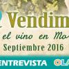 La iniciativa 'La Vendimia, nace el vino en Moriles' pone en valor la manera de vivir y la cultura de los habitantes del municipio cordobés durante el mes de septiembre