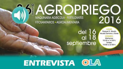 Empieza Agropriego con el olivar como eje central de la edición 36 de esta Feria de Maquinaria Agrícola, Fertilizantes, Fitosanitarios, Agroalimentaria de Priego de Córdoba