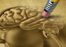 Prevenir el deterioro cognitivo asociado al Alzheimer es el objetivo de unos talleres impartidos por Cruz Roja en Vera, Almería, El Ejido, Adra y Pulpí